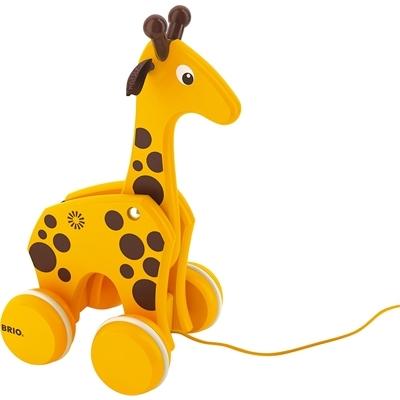 Каталка-игрушка Brio Жираф на веревочкеЖираф на веревочкеКаталку в виде жирафа очень понравиться возить за собой малышам, которые уже научились уверенно ходить без посторонней помощи. Изготовленная из натурального дерева, игрушка оптимально подходит для малышей, ведь она не содержит в себе аллергенов.  Деревянные игрушки Brio уникальны в своем роде. Очень милый, по-настоящему детский дизайн и высокий уровень качества исполнения деталей, а так же использование в качестве основного материала массив дерева – выгодно выделяет развивающие игрушки этой компании среди конкурентов.   Размеры. 11х10х20см Материал. Массив дерева, металл<br>