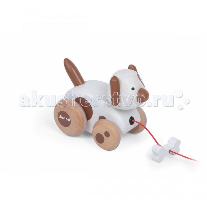 Каталки-игрушки Janod на веревочке Собачка с колокольчиком janod каталка на веревочке поезд ферма разборный с 1 5 лет