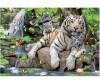 Educa Пазл Белые Бенгальские Тигры 1000 элементов