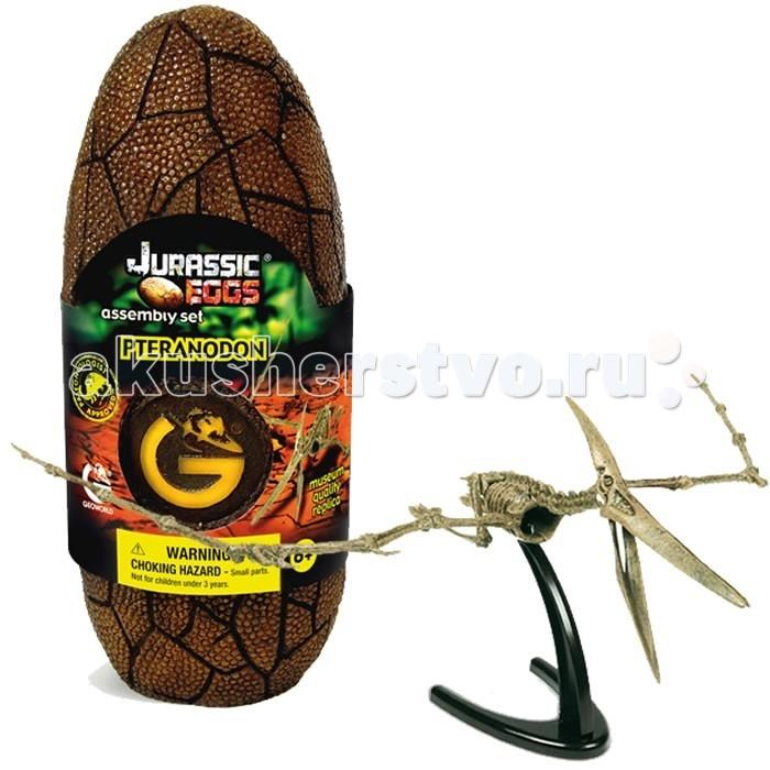 Конструкторы Geoworld Сборная модель динозавра в яйце Jurassic eggs - Птеранодон 13 деталей конструкторы geoworld сборная модель динозавра в яйце jurassic eggs стигимолох n14 деталей