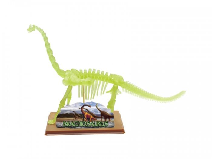 Конструкторы Eastcolight Сборная модель Science Time - Скелет Брахиозавра 14 элементов игрушка eastcolight скелет человека 28206