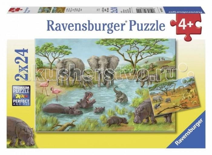 Пазлы Ravensburger Пазл Дикая природа 2х24 элементов