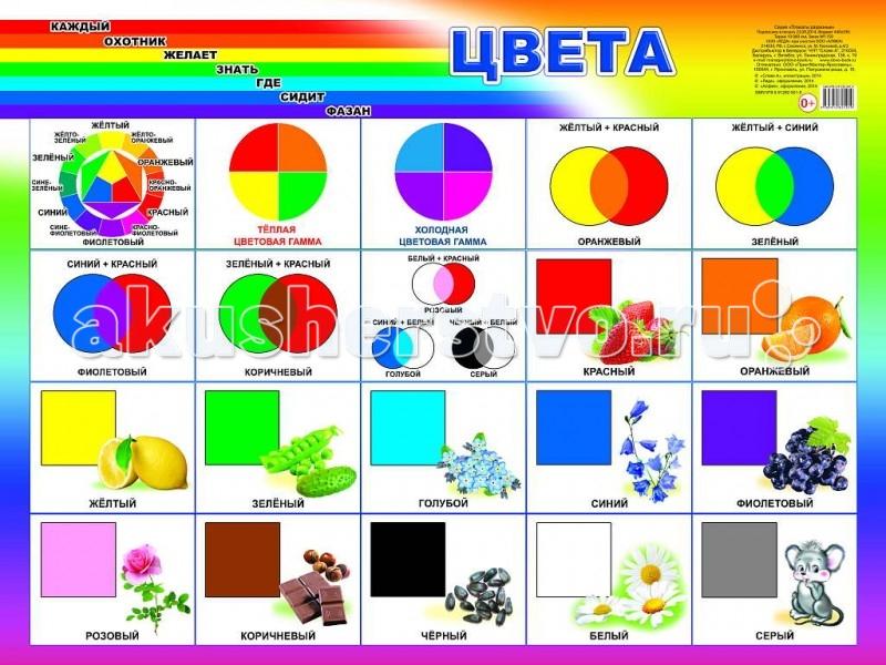 Обучающие плакаты Алфея Плакат Цвета  обучающие плакаты алфея плакат инструменты