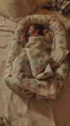 38342 Loombee Кокон-гнездышко для новорожденных BN-0030 от пользователя Милена