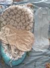 10937 Сонный гномик Кокон и шапочка от пользователя Александра