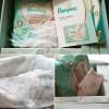 15806 Pampers Подгузники-трусики Premium Care 3 р. (6-11 кг) 70 шт. от пользователя Людмила