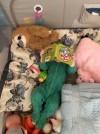 29195 Happy Baby Alex Home с лампой от пользователя Екатерина