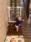 44849 Forest kids Ворота безопасности для дверных проемов от пользователя Эвелина