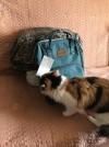 29681 Forest kids Сумка-рюкзак для мамы Tarde от пользователя Анастасия
