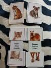 63016 Росмэн Раздвигающиеся карточки Животные от пользователя Олеся