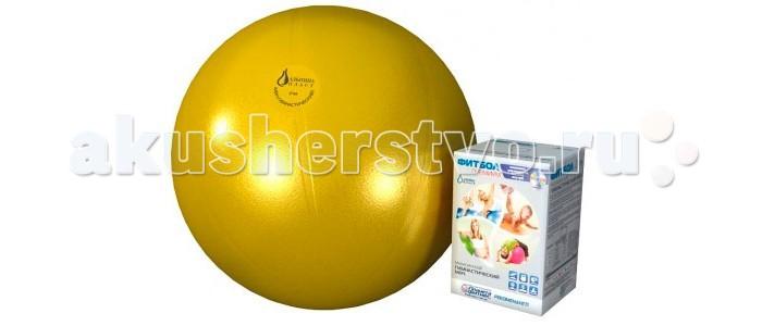 Спорт и отдых , Мячи Альпина Пласт Мяч гимнастический фитбол Премиум 65 см арт: 43232 -  Мячи