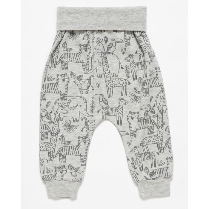 Штанишки и шорты Artie для мальчика Jungle ABr-440m