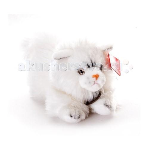 Мягкие игрушки Aurora Кошка персидская 25 см 11-444/11-454