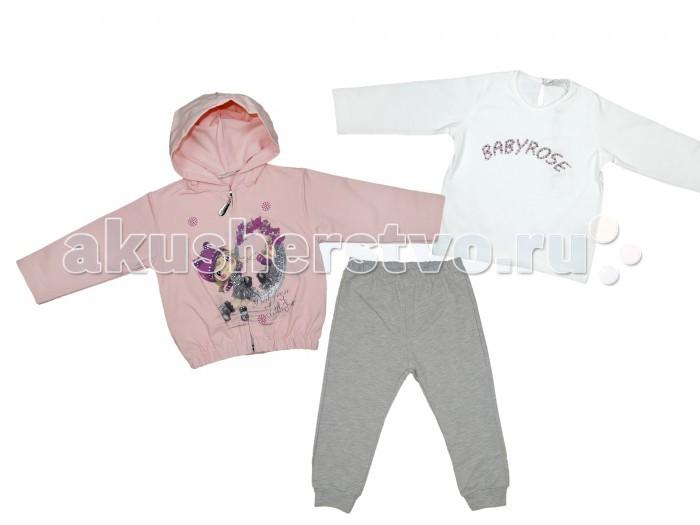 Комплекты детской одежды Baby Rose Комплект для девочки 7234