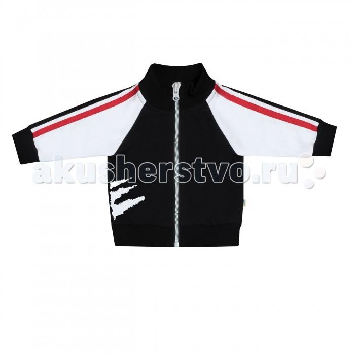 Толстовки, свитшоты, худи Babygold Куртка для мальчика Gatto trybeyond куртка для мальчика 999 77495 00 94z серый trybeyond
