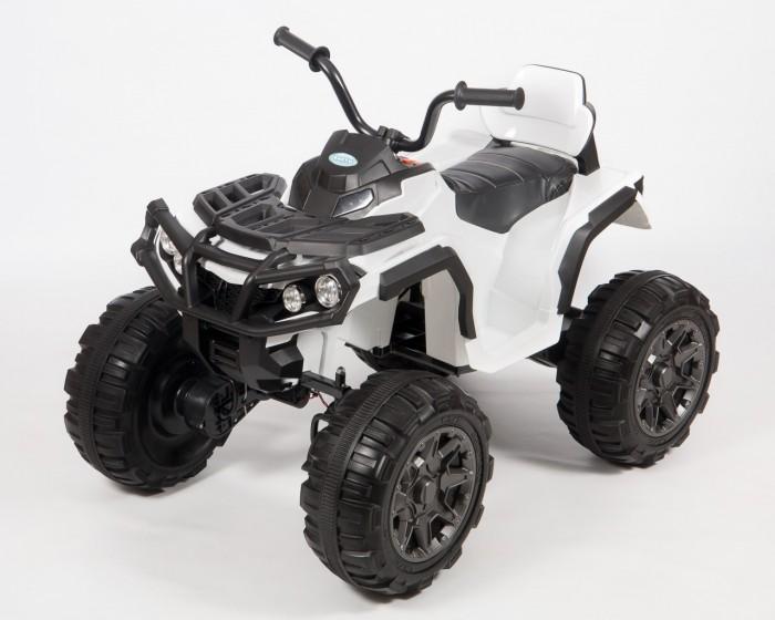 детский электроквадроцикл Электромобили Barty Электроквадроцикл детский Т001МР (2WD)