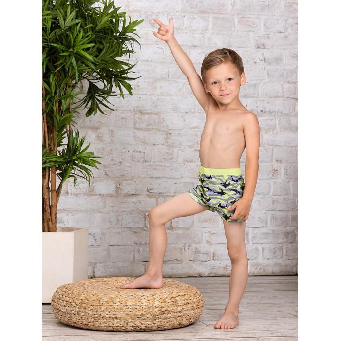 Плавки Bluebells Плавки купальные для мальчика BB704 плавки pelican шорты купальные для мальчика bwhe3216