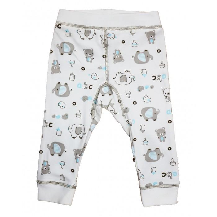 Штанишки и шорты Bonito kids Штанишки для девочки Мишки ОР236Ш недорого