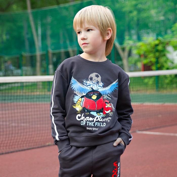 Купить Толстовки и свитшоты, Bossa Nova Свитшот для мальчика Angry Birds 203АБ-461с