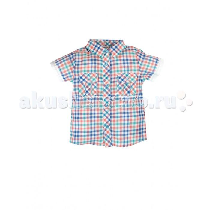 Bossa Nova Рубашка для мальчика Африка 61R81