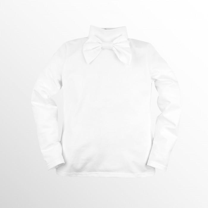 Блузки и рубашки Bossa Nova Водолазка Перемена  213Н-157