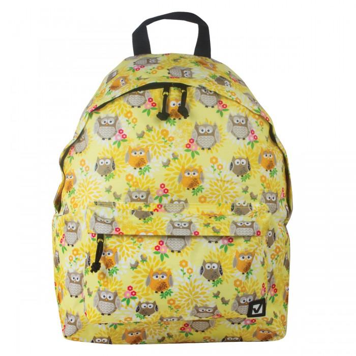 Школьные рюкзаки Brauberg Рюкзак Совушки в цветах