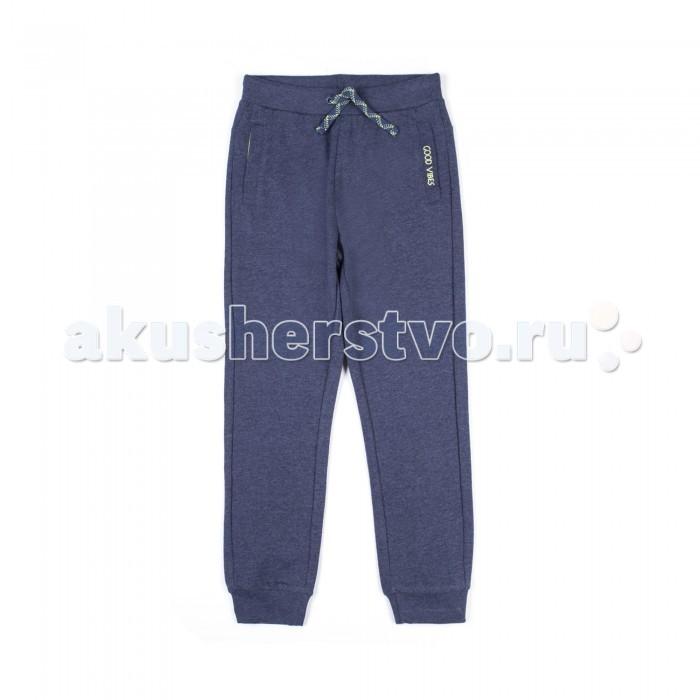 Брюки, джинсы и штанишки Coccodrillo Брюки Basic Boy брюки и капр