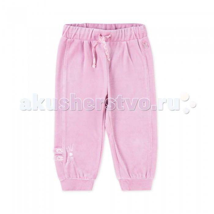 Брюки, джинсы и штанишки Coccodrillo Брюки для девочки Bunny
