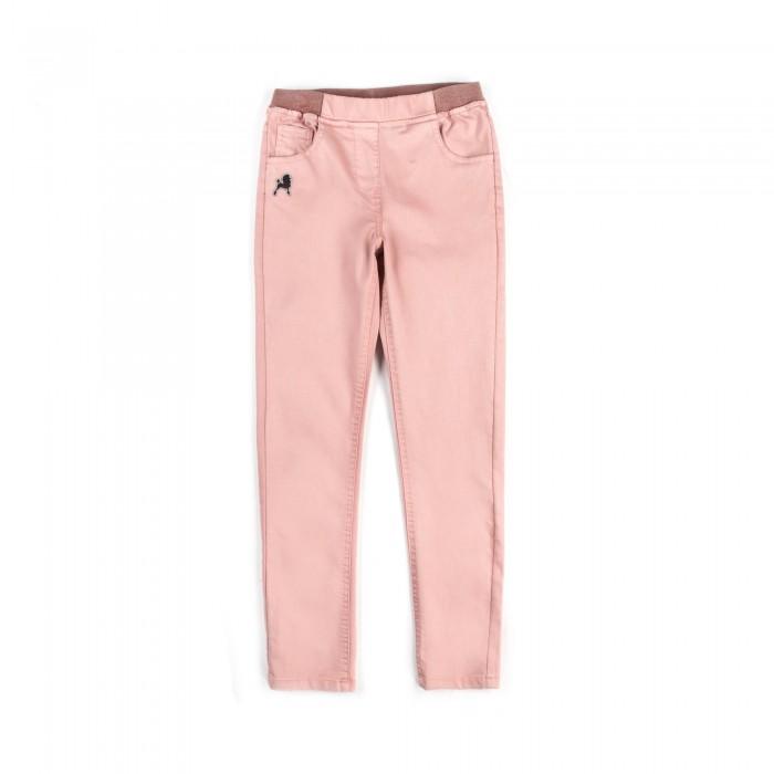 Детская одежда , Брюки, джинсы и штанишки Coccodrillo Брюки для девочки Pop арт: 516496 -  Брюки, джинсы и штанишки