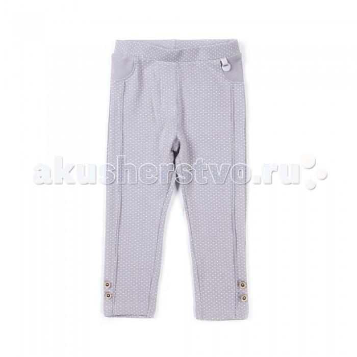 Детская одежда , Брюки, джинсы и штанишки Coccodrillo Брюки для девочки Z17120101HOR Horses арт: 396989 -  Брюки, джинсы и штанишки
