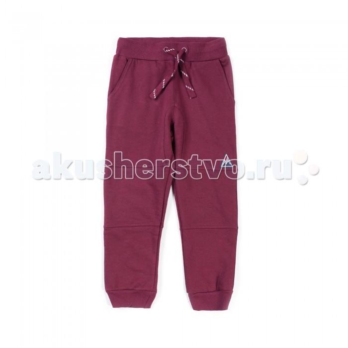 Детская одежда , Брюки, джинсы и штанишки Coccodrillo Брюки для мальчика Time to move on арт: 396964 -  Брюки, джинсы и штанишки