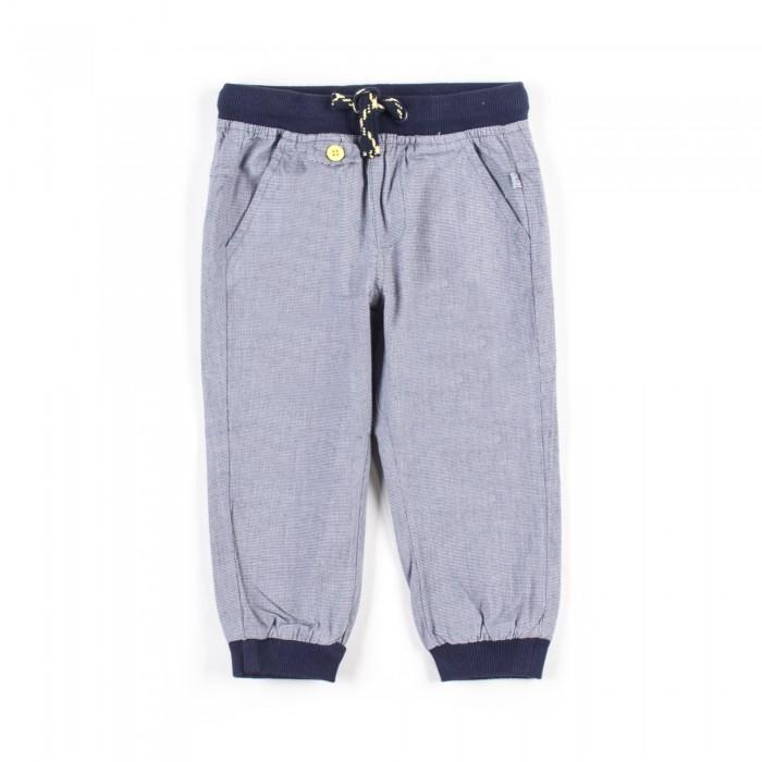 Брюки, джинсы и штанишки Coccodrillo Брюки для мальчика Under the Sea