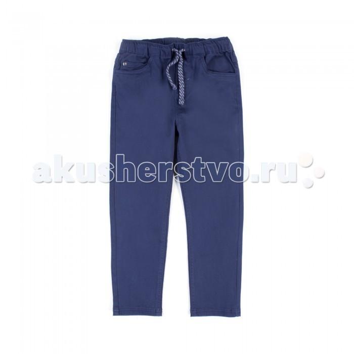 Брюки, джинсы и штанишки Coccodrillo Брюки на шнурке Basic Boy брюки джинсы и штанишки coccodrillo брюки для девочки horses