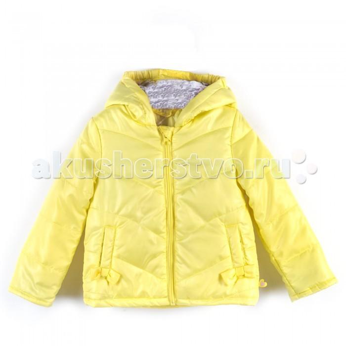 Детская одежда , Куртки, пальто, пуховики Coccodrillo Куртка Bу Sweet арт: 468371 -  Куртки, пальто, пуховики