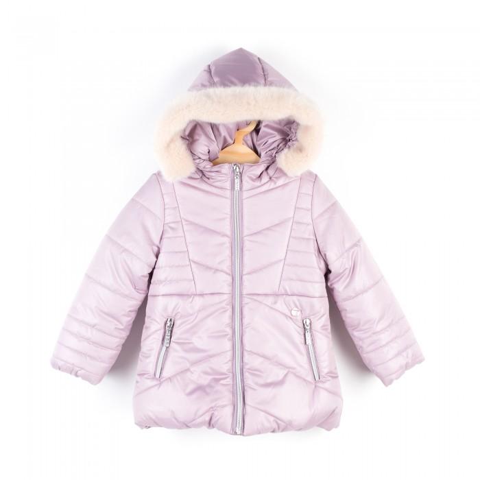 Детская одежда , Куртки, пальто, пуховики Coccodrillo Куртка для девочки Penguin арт: 407704 -  Куртки, пальто, пуховики