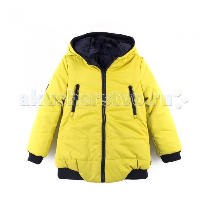 Детская одежда , Куртки, пальто, пуховики Coccodrillo Куртка для девочки Wild at heard арт: 398974 -  Куртки, пальто, пуховики