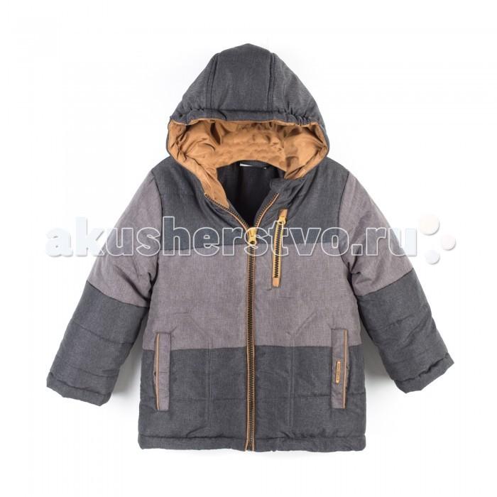 Детская одежда , Куртки, пальто, пуховики Coccodrillo Куртка для мальчика Snowboard Boo арт: 398714 -  Куртки, пальто, пуховики