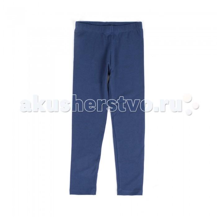 Брюки, джинсы и штанишки Coccodrillo Леггинсы для девочки Basic Girl