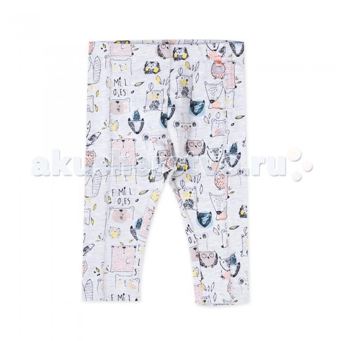 Брюки, джинсы и штанишки Coccodrillo Леггинсы для девочки Family Forest J17122104FAM-003 брюки джинсы и штанишки coccodrillo брюки для девочки family forest