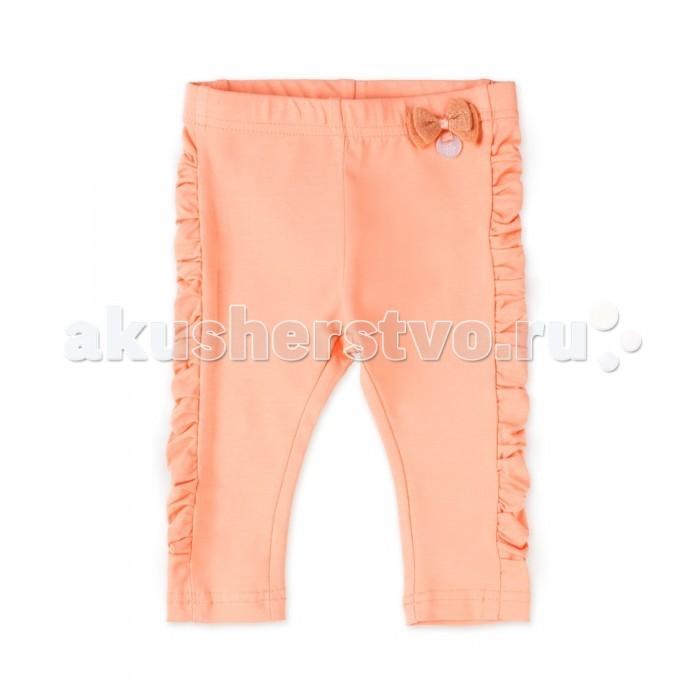 Брюки, джинсы и штанишки Coccodrillo Леггинсы для девочки Family Forest