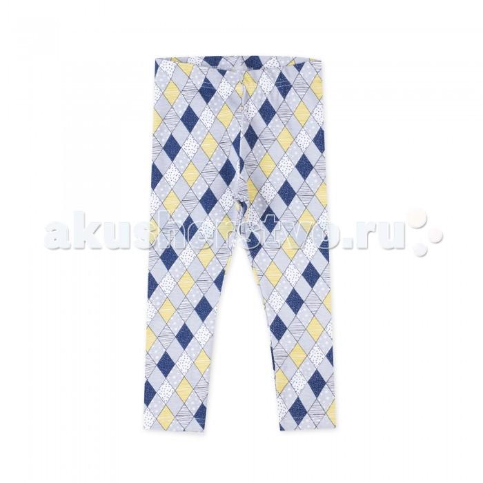 Брюки, джинсы и штанишки Coccodrillo Леггинсы для девочки Magic is all around брюки джинсы и штанишки s'cool брюки для девочки hip hop 174059
