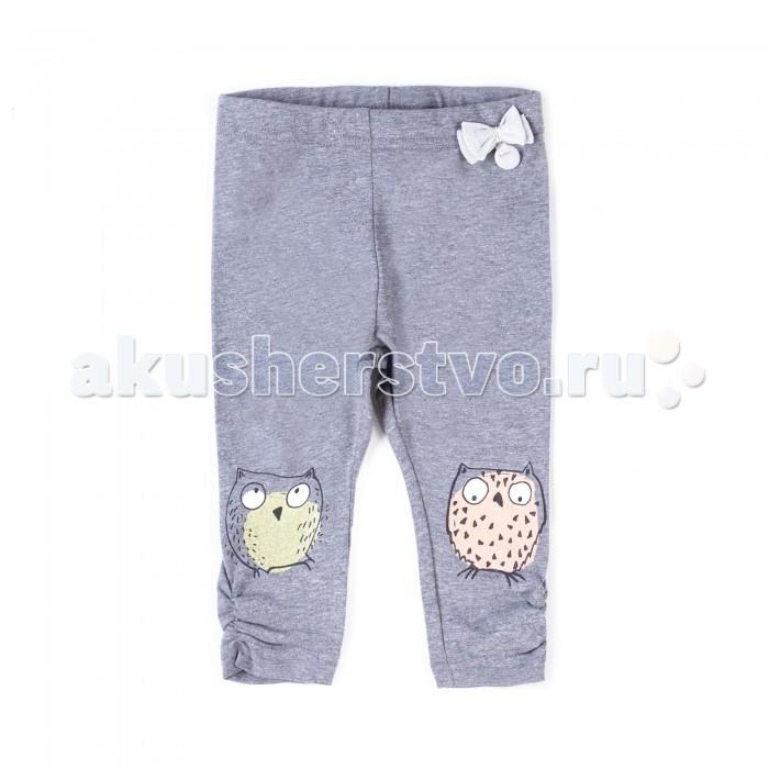 Брюки, джинсы и штанишки Coccodrillo Леггинсы Family Forest брюки джинсы и штанишки coccodrillo брюки для девочки family forest