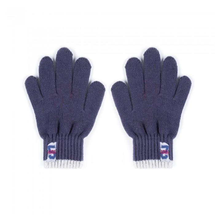 Варежки, перчатки и шарфы Coccodrillo Перчатки для мальчика Nordic Expedition