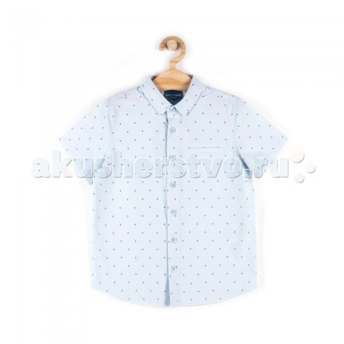 Детская одежда , Блузки и рубашки Coccodrillo Рубашка для мальчика Elegant junior boy арт: 517426 -  Блузки и рубашки