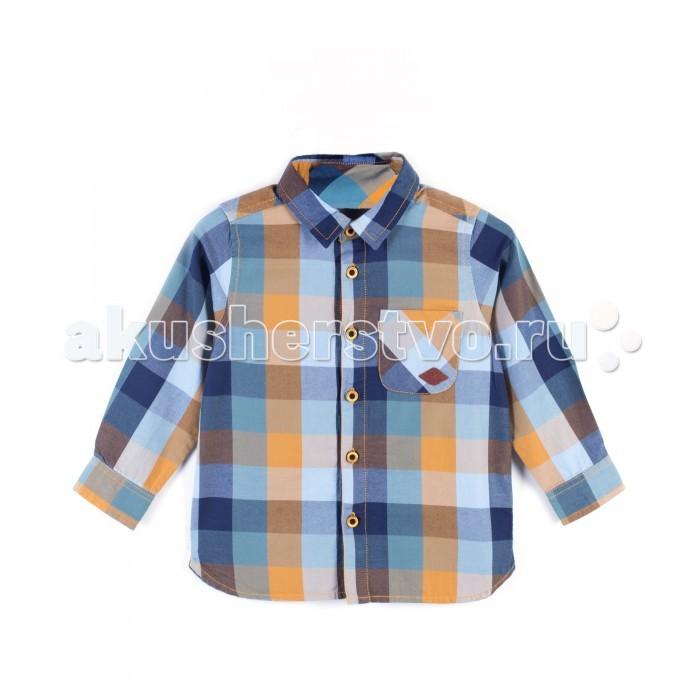 Детская одежда , Блузки и рубашки Coccodrillo Рубашка для мальчика Scent арт: 399394 -  Блузки и рубашки