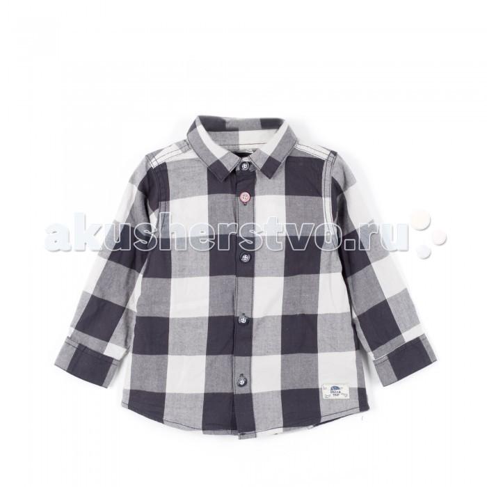Детская одежда , Блузки и рубашки Coccodrillo Рубашка для мальчика So What арт: 381844 -  Блузки и рубашки