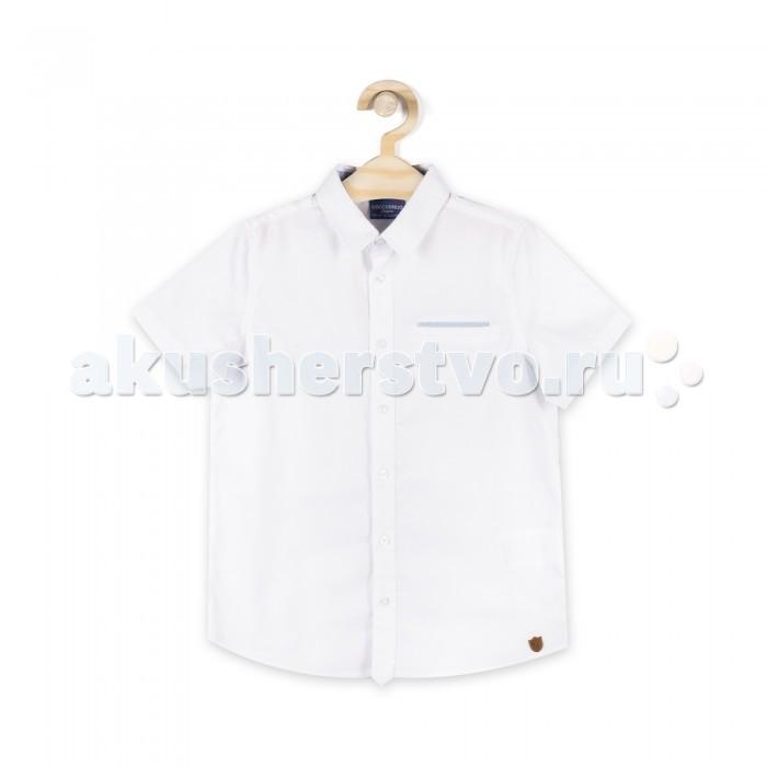 Детская одежда , Блузки и рубашки Coccodrillo Рубашка короткий рукав для мальчика Back to School Boy арт: 506016 -  Блузки и рубашки
