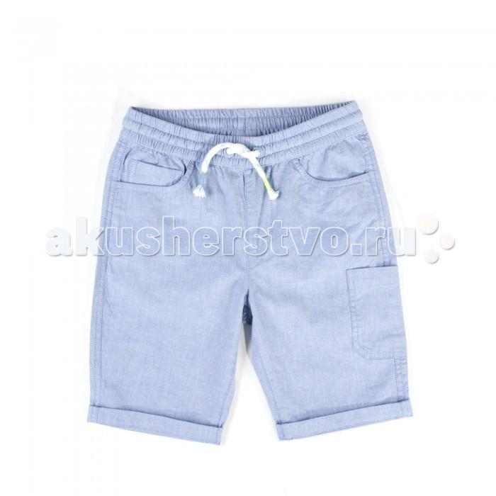 Детская одежда , Шорты и бриджи Coccodrillo Шорты Jungle Explorer арт: 516631 -  Шорты и бриджи