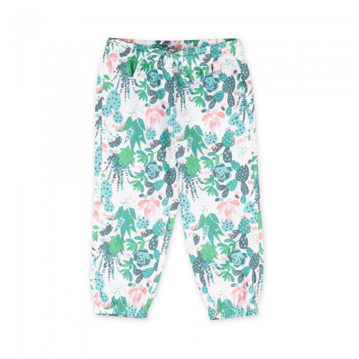 Детская одежда , Брюки, джинсы и штанишки Coccodrillo Штанишки Cactus арт: 516486 -  Брюки, джинсы и штанишки