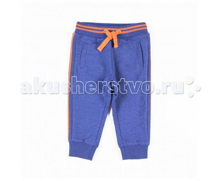 Детская одежда , Брюки, джинсы и штанишки Coccodrillo Штанишки для мальчика Cuban Flairs арт: 518696 -  Брюки, джинсы и штанишки